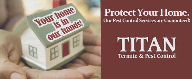Titan Termite & Pest Control South Carolina